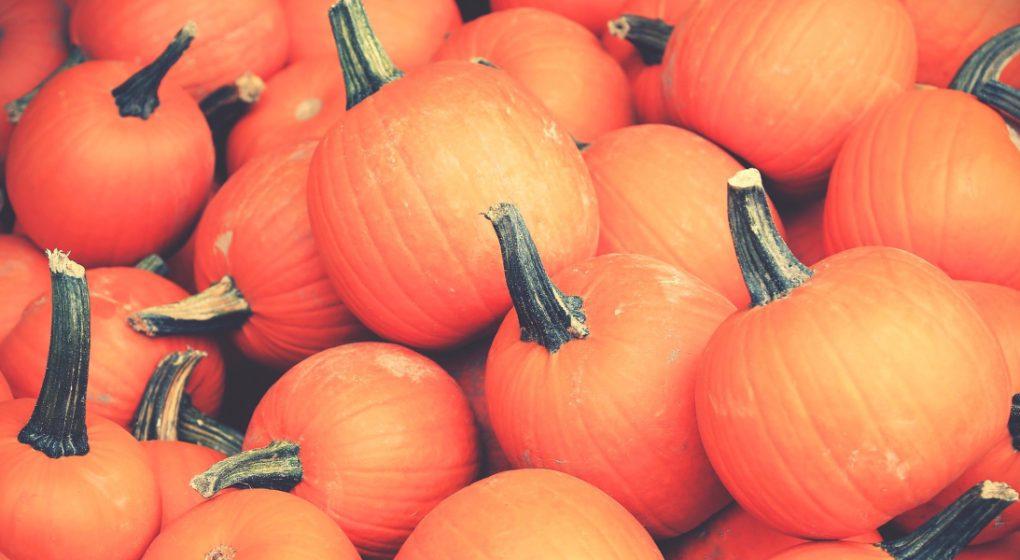 Pumpkinfied